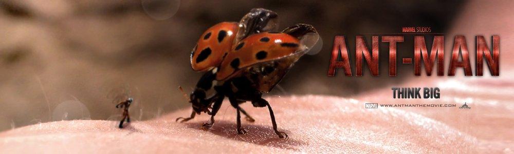 ant man banner by skinnyglasses d39n04l Animator Recreates Secret ANT MAN Teaser... Take That Marvel!