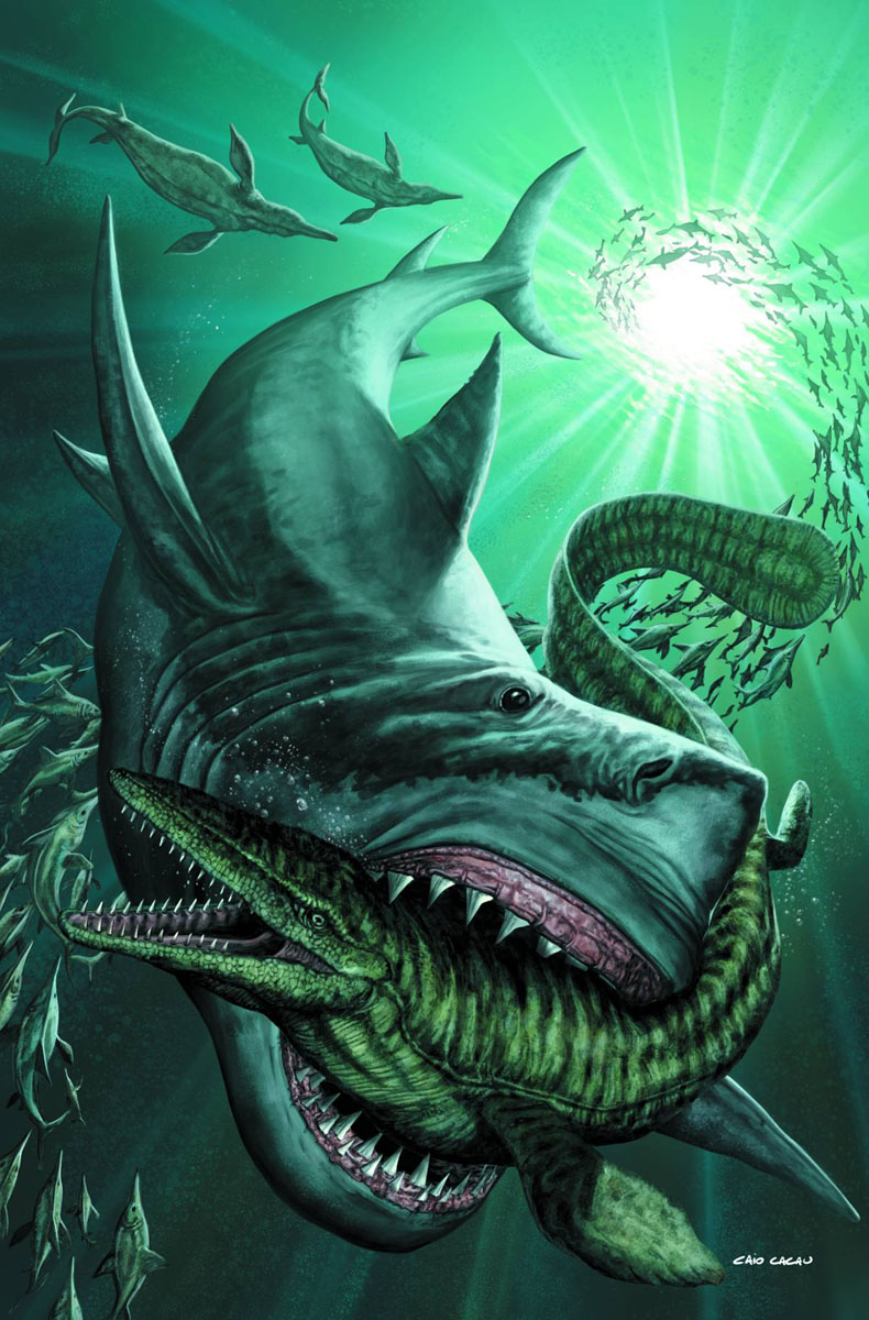 sharks ZENESCOPE ENTERTAINMENT Solicitations for FEBRUARY 2013